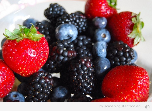 Img Berries 1 Top Four Natural Antioxidant Foods