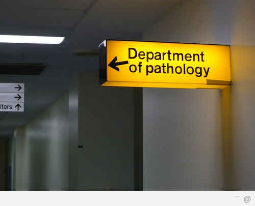 pathology How Can Speech Pathology Help You Or Your Child