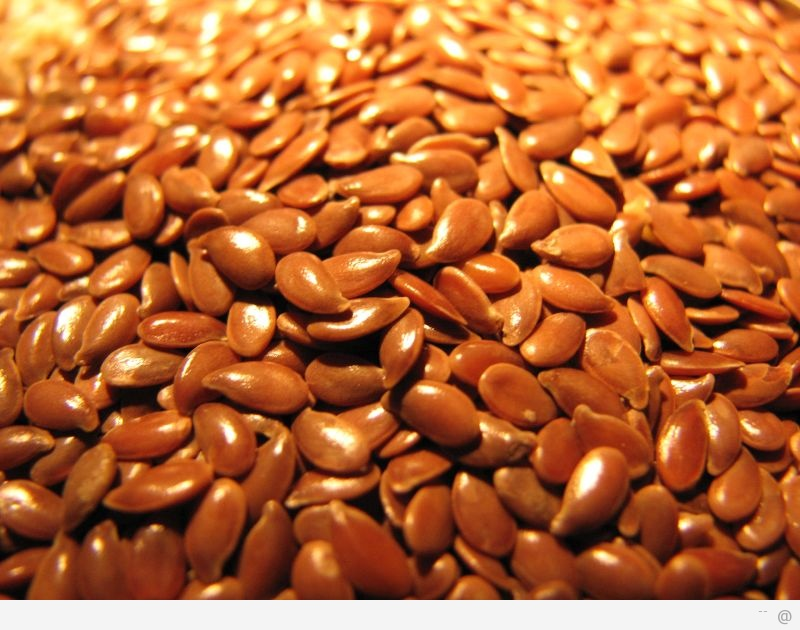 flax seed The benefits of Flax Seed Oil