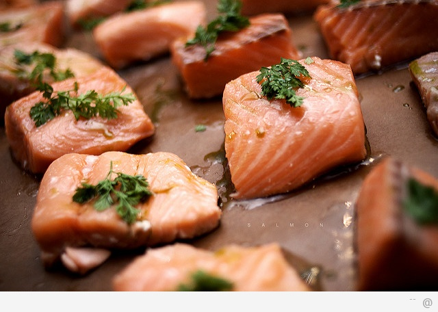 salmon Sources of Omega 3 Fatty Acids