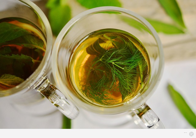 catechin antioxidant in green tea Dont call green tea a wonder drug