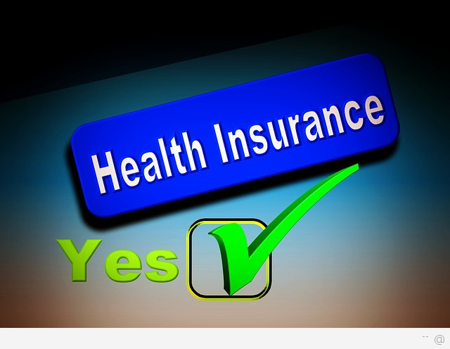 Private Health Insurance USA Deliberating As To Whether Private Health Insurance Qualifies As A Definitive Choice?