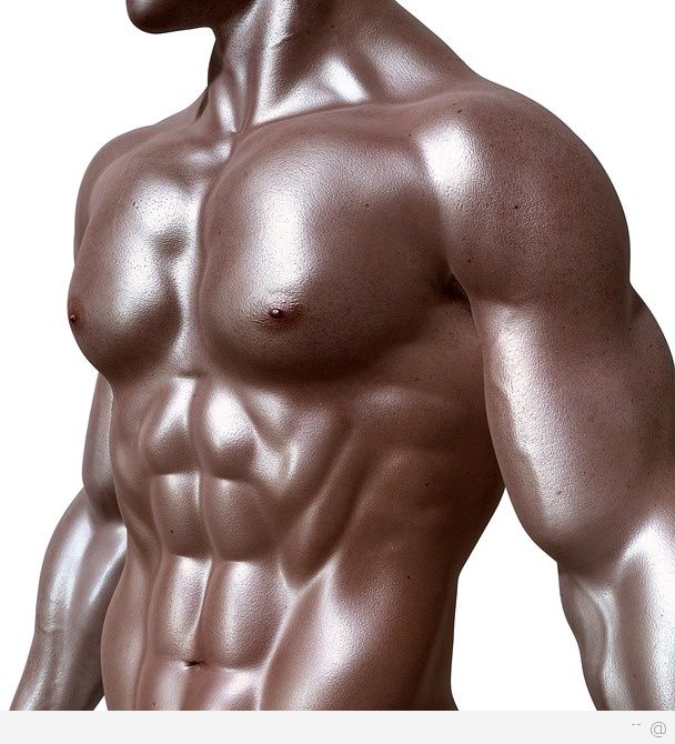 Six Pack bodybuilder 6 Easy Abdominal Exercises For A Six Pack