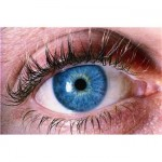Everything You Need To Know About Colored Contact Lenses