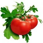 Top Four Natural Antioxidant Foods