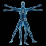 Chiropractic Treatments Increasing Among Children
